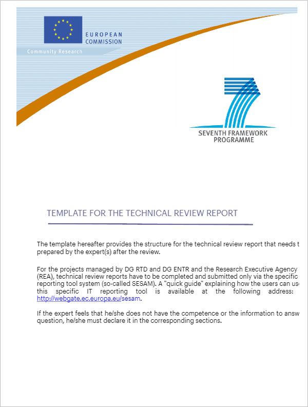 Technical Review Report Template