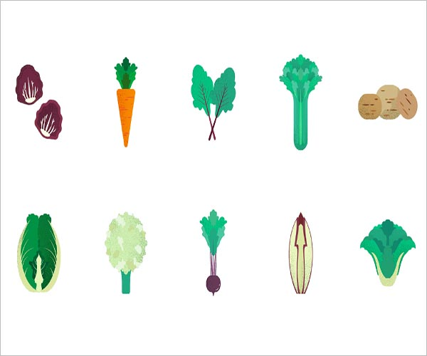 Vegetable Icon Design Free Download