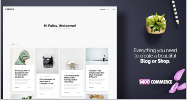 Woocommerce Blog Themes