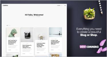Woocommerce Blog Themes