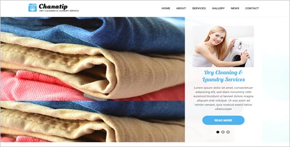 Best Laundry Website template