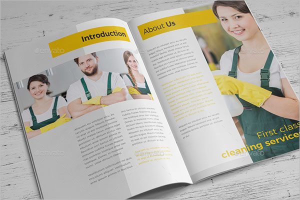 Cleaning Company Brochure Free Download