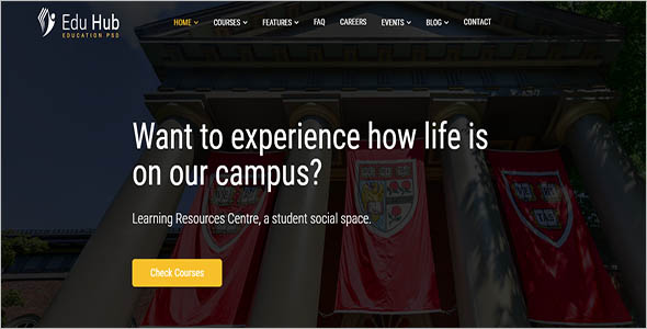 College Layout Website Theme