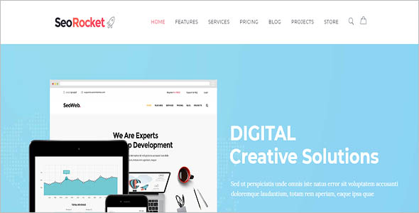 Customizable Seo Company WordPress Theme