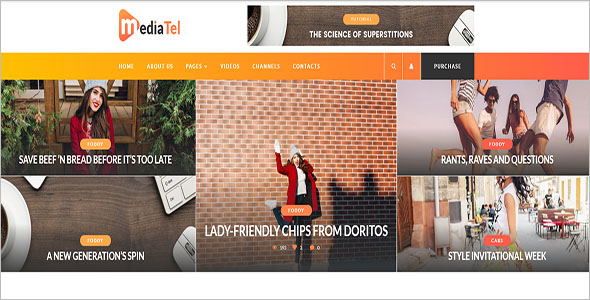 Media Video WordPress Theme
