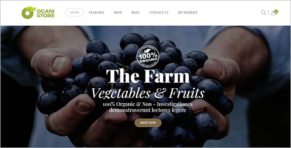 Organic Food Store Woocommerce Theme