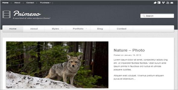 Premium Video WordPress Theme