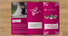 31+ Printable Brochure Templates