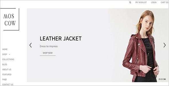 Shopify Ecommerce Website Theme