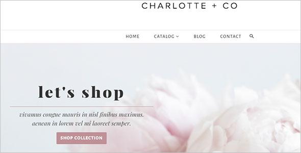 Shopify ecommerce Theme Example