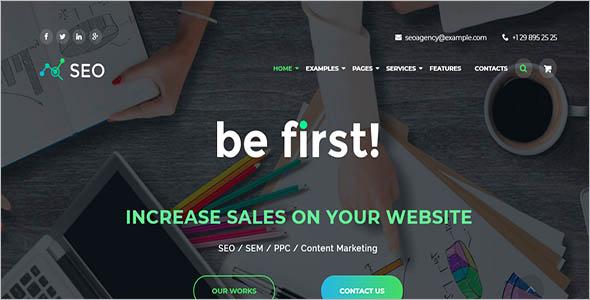 Simple Seo Company WordPress Theme