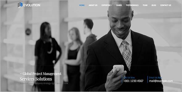 Wordpress Seo Agency Theme