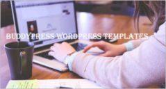 15+ Best BuddyPress WordPress Themes