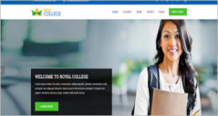 31+ College Website Themes