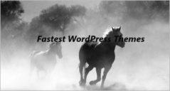 20+ Fastest Loading WordPress Themes