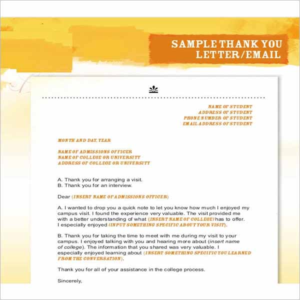 Modern Thank You Letter Template