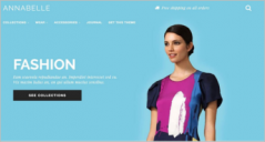42+ Best Shopify Website Themes