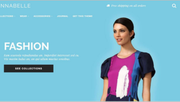 Shopify Website Themes