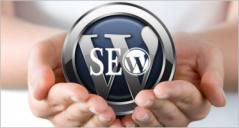 19+ Seo Company Wordpress Themes
