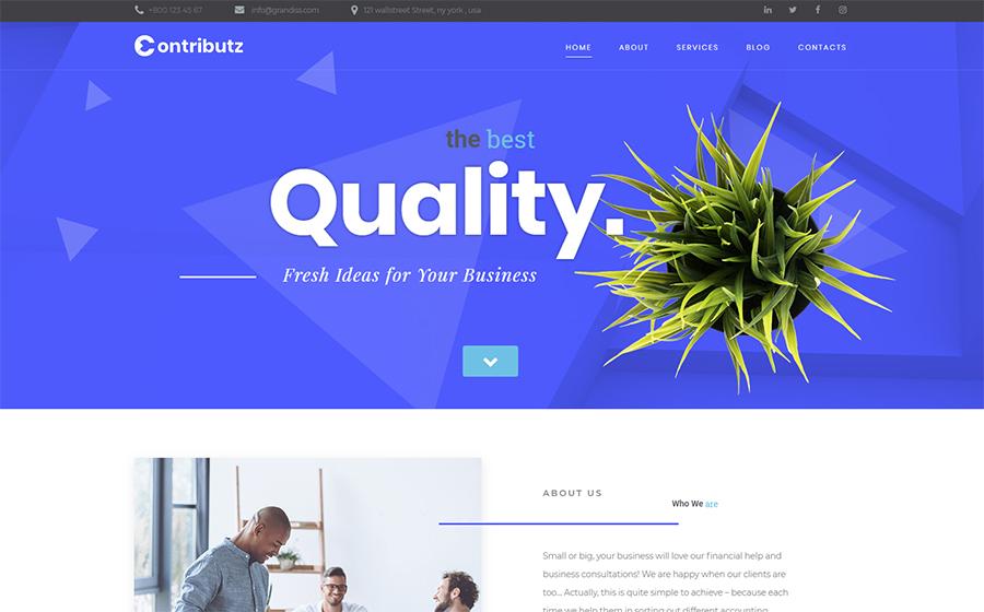 Contributz - Corporate Consulting Elementor WordPress Theme