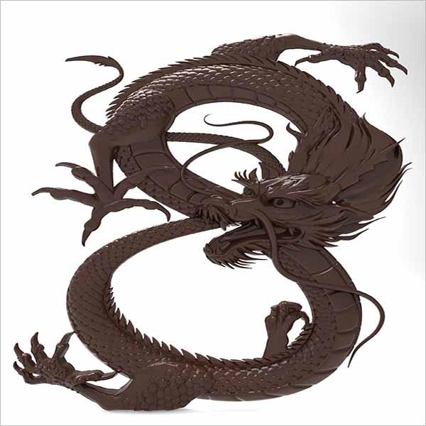 Chinese Dragon Design