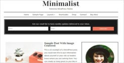Minimalist Feminine WordPress Wocommerce Theme