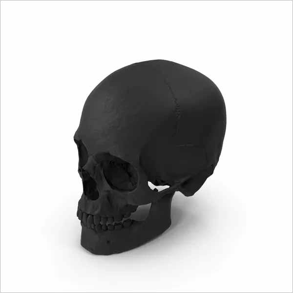 Rubber Skull 3D Design