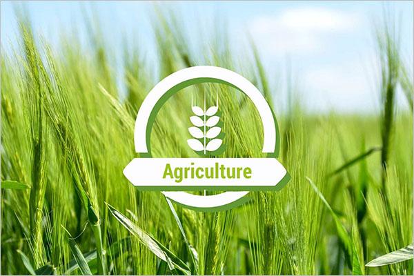 Agriculture Presentation Template