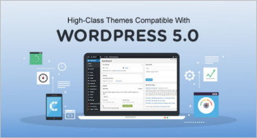 High-Class Themes Compatible With WordPress 5.0