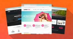 30+ Best Magento Community Themes