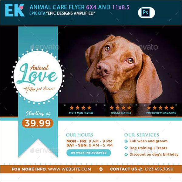 Dog-Service-Colorful-Flyer template
