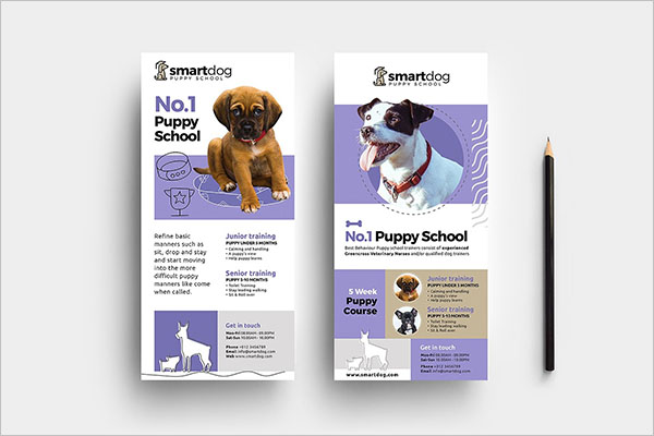 Popular Dog Service Flyer Design