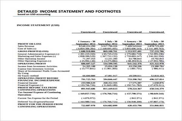 Monthly Income Statement Format PDF