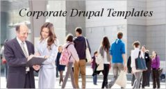 11+ Best Corporate Drupal Themes