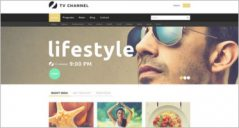 15+ Best TV Channel Joomla Website Templates