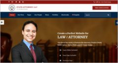 14+ Lawyer WordPress Themes