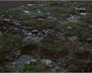 Textures Grass