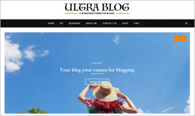 Ultra Lite Blog - Free Download