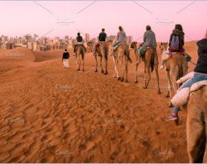 tourists ride dromedaries
