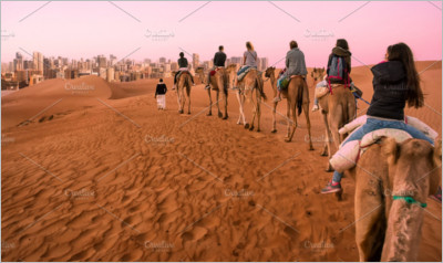 Group of Tourists Ride Dromedaries