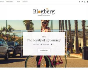 Blogberg WordPress Theme