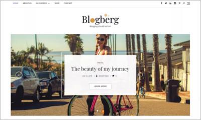 Blogberg WordPress Theme - Free Download