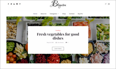 Bloguten WordPress Theme - Free Download