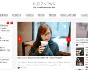 Buzz News WordPress Theme