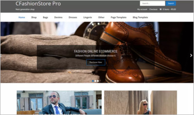 CFashionStore Lite WordPress Theme - Free Download