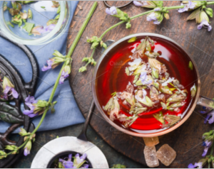 Cup of herbal tea with fresh herbs