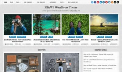 Elite WordPress Theme - Free Download