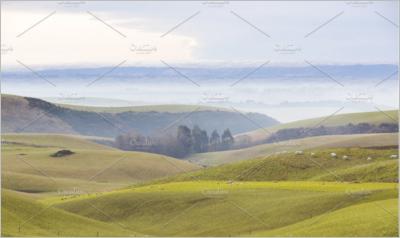 Farming fields in New Zealand