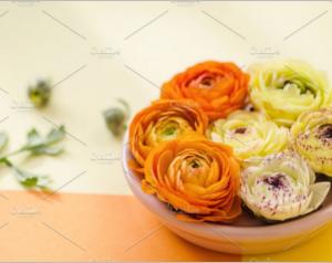 Flowers, Orange, Yellow, Sun Light