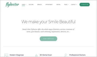 FlyDoctor WordPress Theme
